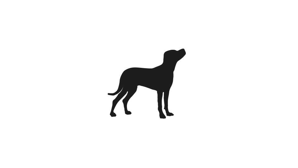 ai_dog_title